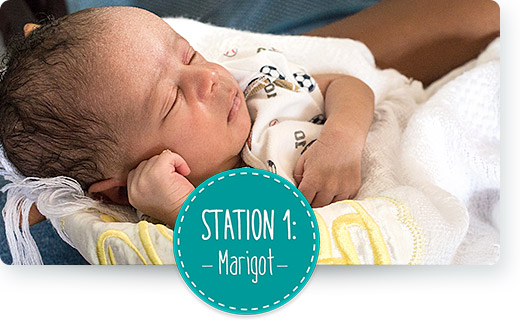 Station 1: Marigot
