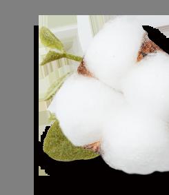 Weiche Bio-Baumwolle